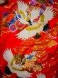 Photo9: G0805V Used Japanese Kimono  Bright Red UCHIKAKE Wedding by Silk. Crane  (Grade A) (9)